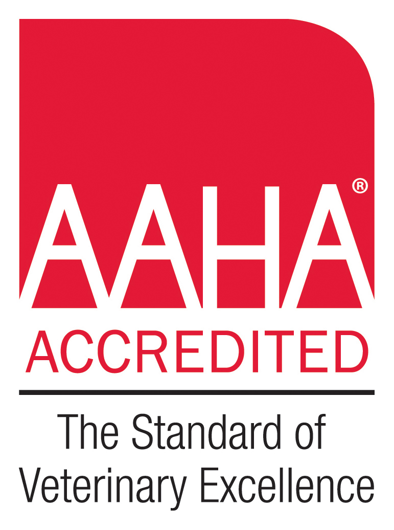 Aaha Accredited Veterinarian In Ithaca Ny Briar Patch Veterinary